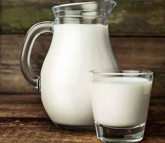 लठ्ठपणा कमी करण्यासाठी आणि आकर्षक फिगर मिळवण्यासाठी फायदेशीर गाढवीनचे दूध...| - Divya Marathi