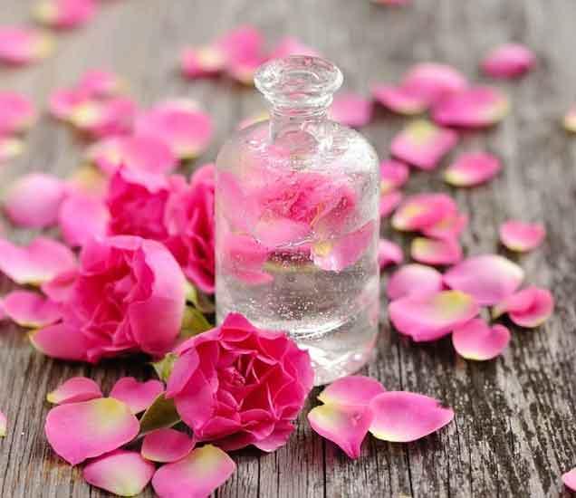 बहुउपयोगी गुलाब जलचे सौंदर्य फायदे तुम्हाला माहिती आहेत का, वाचा या टिप्स...| - Divya Marathi