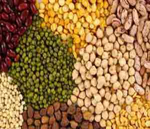साठेबाजांवर छापासत्र; ५८०० टन डाळ जप्त -  केंद्राची धडक कारवाई देश,National - Divya Marathi