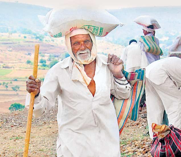 दिव्य मराठीकडून उस्मानाबाद, बीड जिल्ह्यात गरजवंतांना ३५ टन 'अन्नदान'|औरंगाबाद,Aurangabad - Divya Marathi