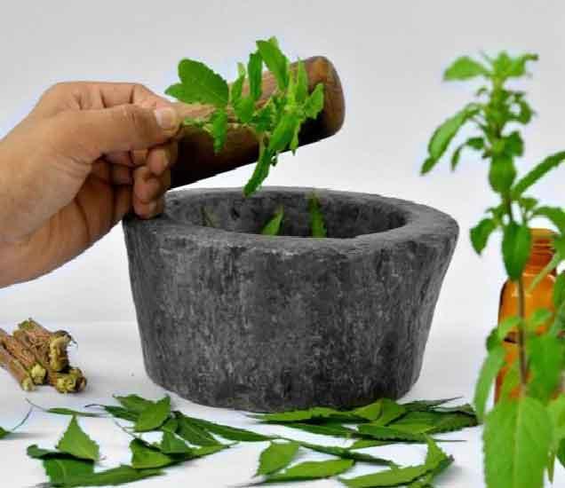 फटाक्याने हात जळाल्यावर लावा तुळशीच्या पानांचा रस, वाचा असेच 6 उपाय...|देश,National - Divya Marathi
