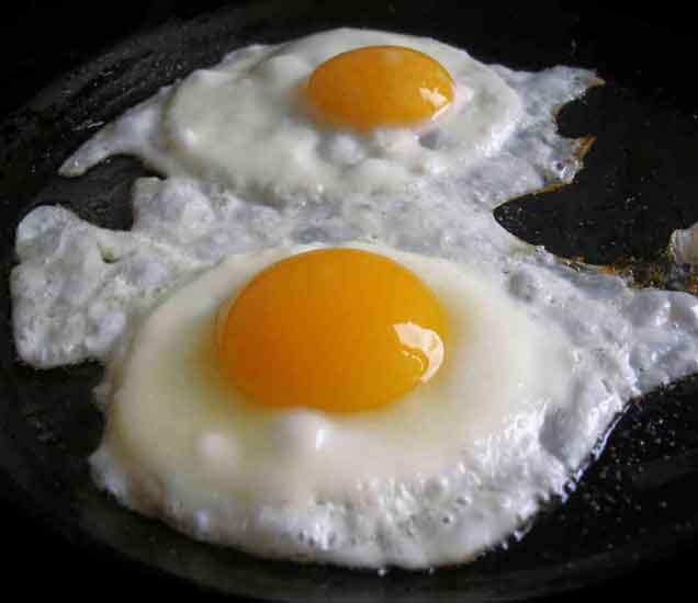 पौष्टीक अंडी खाऊन अशा प्रकारे करता येईल लठ्ठपणा कमी...| - Divya Marathi
