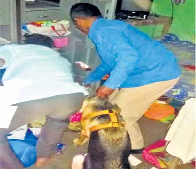 सशस्त्र दरोडा- डोळ्यात मिरची पावडर फेकली, ५६,५०० रुपयांचा एेवज लंपास औरंगाबाद,Aurangabad - Divya Marathi