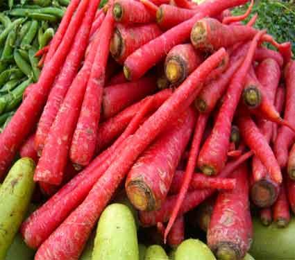 हिवाळ्यात गाजराचे आहेत मोठे फायदे, फक्त डोळ्यांसाठीच नाही अन्य रोगांसाठी फायदेशीर जीवन मंत्र,Jeevan Mantra - Divya Marathi
