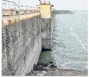 जायकवाडी धरणात १०.८५ टक्के साठा|औरंगाबाद,Aurangabad - Divya Marathi