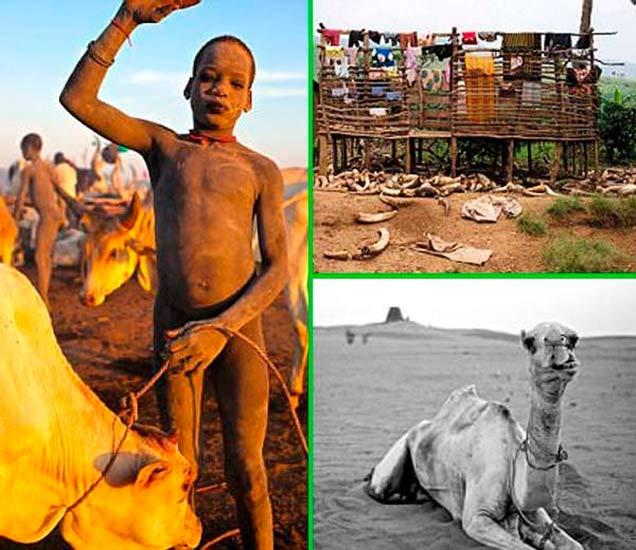 ब्रिटनच्या फोटोग्राफरने दाखवली आफ्रिकेतील नाईल नदीच्या किना-यावरील लोकांची LIFE| - Divya Marathi