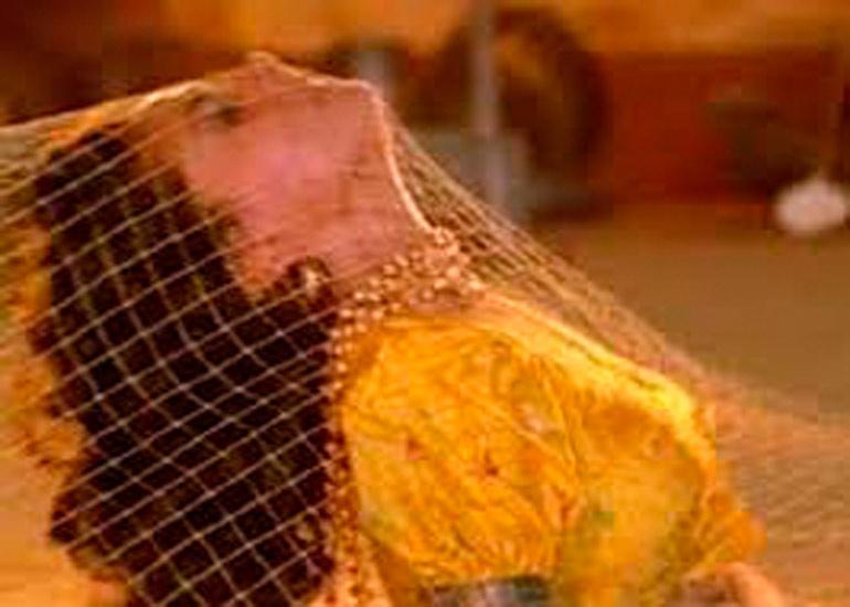 वाचा, माधुरी दिक्षीतचा कसा झाला Accident? ' हमको आज कल हैं' गाण्यावर नाचताना| - Divya Marathi