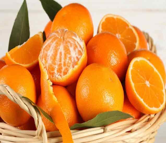 रोज एक संत्री खाल्ल्याने होतात मोठे फायदे, या 16 रोगांवर आहे रामबाण उपाय...|देश,National - Divya Marathi