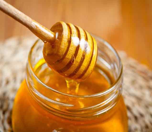 जाणुन घ्या तीळ आणि मध सेवन करण्याचे 10 मोठे फायदे...| - Divya Marathi