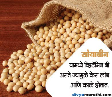 म्हातारपणापर्यंत केस राहतील काळे आणि दाट, खावेत हे 12 पदार्थ... जीवन मंत्र,Jeevan Mantra - Divya Marathi