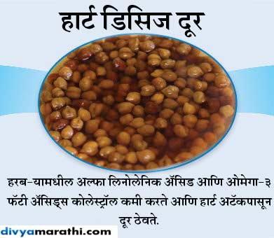 भिजवलेला हरबरा आहे शरीरासाठी उपयुक्त, वाचा 12 चकीत करणारे फायदे... जीवन मंत्र,Jeevan Mantra - Divya Marathi