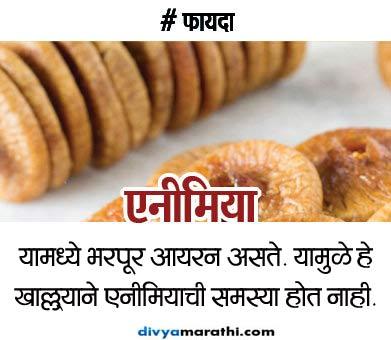 दररोज सकाळी खा हे 4 नट्स, होतील हो 12 खास फायदे... जीवन मंत्र,Jeevan Mantra - Divya Marathi