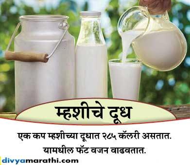 सकाळी चुकूनही घेऊ नका म्हशीचे दूध आणि हे 6 ड्रिंक, लठ्ठपणा राहील नेहमी दूर... देश,National - Divya Marathi