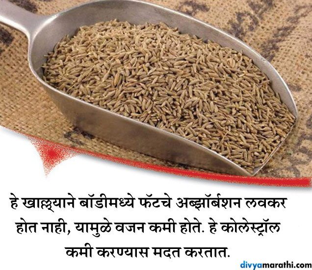 रोज चिमूटभर जिरे खाण्याचे हे फायदे वाचून चकीत व्हाल तुम्ही जीवन मंत्र,Jeevan Mantra - Divya Marathi