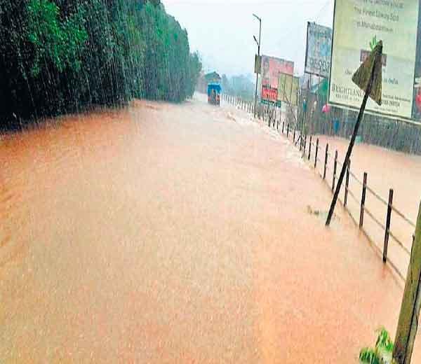राज्यातील सर्व धरणे ऑगस्टअखेर भरणार, कमी दाबाच्या पट्ट्याने महाराष्ट्र चिंब औरंगाबाद,Aurangabad - Divya Marathi