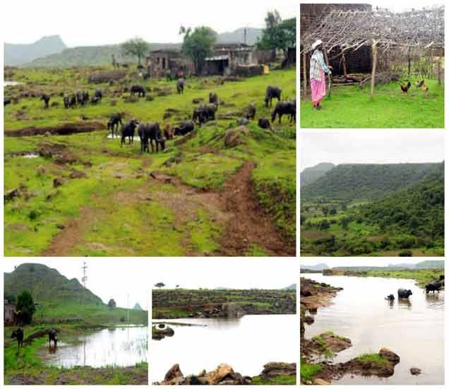 रसुलपूरा हे डोंगरावर वसलेले टुमदार गाव आहे. - Divya Marathi