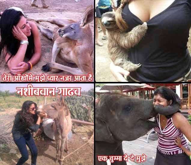 FUNNY: लोक कशातही सिमिलॅरिटी शोधतात, एकापेक्षा एक भन्नाट फोटो पाहून लोटपोट व्हाल| - Divya Marathi