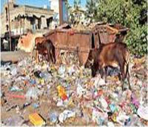 रामपुरी कॅम्प परिसरात रस्त्याच्या कडेला कचरा संकलनासाठी ठेवलेले कंटेनर असे आेव्हर फ्लो झाले असून, रस्त्यावर कचरा असा विखुरला गेला आहे. - Divya Marathi