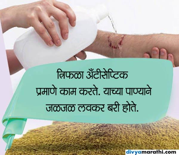 त्रिफळाचे 10 फायदे : फक्त 1 चमचा घेतल्याने कमी होईल लठ्ठपणा, केस होतील काळे|जीवन मंत्र,Jeevan Mantra - Divya Marathi
