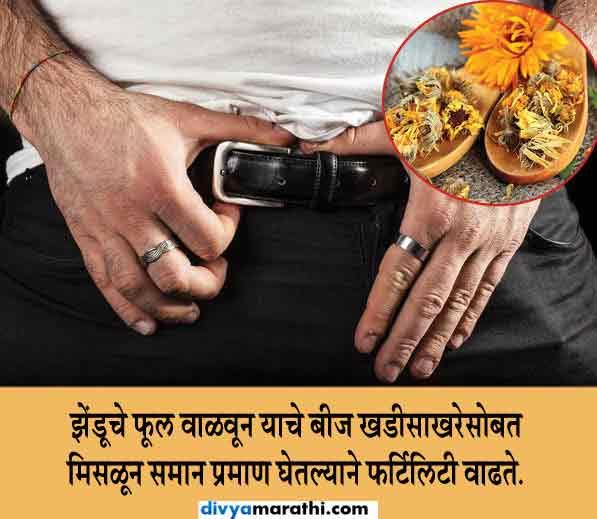 त्वचेवर लावा झेंडूच्या फुलांचा रस, वाढेल ग्लो, जाणुन घ्या 10 फायदे...|जीवन मंत्र,Jeevan Mantra - Divya Marathi