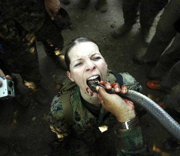 थायलंडमधील चोन बुरी प्रांतात जंगल एक्सरसाईज दरम्यान कोबरा सापाचे रक्त पिताना महिला अमेरिकन सैनिक. हा एक्सरसाईज थाई नेवीसमवेत सयुंक्तरित्या केला होता. - Divya Marathi