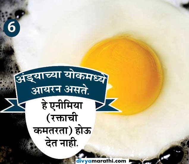 फेकू नका अंड्याचा पिवळा भाग, यामुळे मिळतील 10 फायदे|जीवन मंत्र,Jeevan Mantra - Divya Marathi