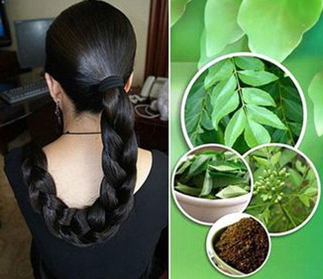 घनदाट आणि काळे केस हवे असल्यास आजपासूनच सुरु करा हे घरगुती उपाय|जीवन मंत्र,Jeevan Mantra - Divya Marathi
