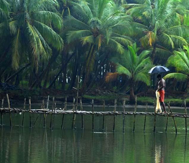 नैऋत्य मोसमी पाऊस निर्धारित वेळेच्या दोन दिवस आधीच केरळात. - Divya Marathi