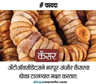 दररोज सकाळी खा हे 4 नट्स, होतील हो 12 खास फायदे...|जीवन मंत्र,Jeevan Mantra - Divya Marathi