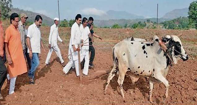 संवाद यात्रेत पालकमंत्री राम शिंदे यांनी शेतात असा नांगर हातात धरला. - Divya Marathi