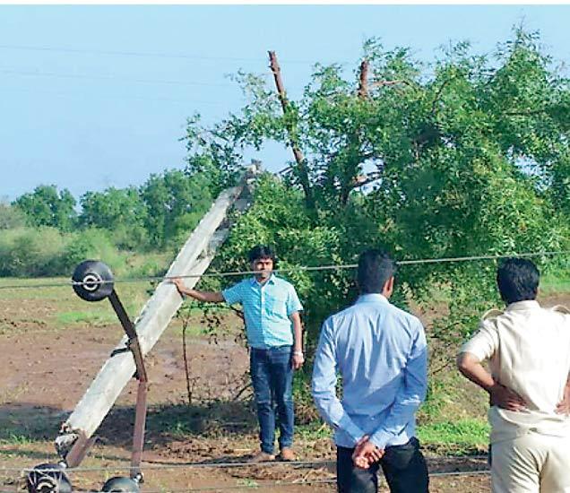 दोनशे वीज खांब पडले - Divya Marathi