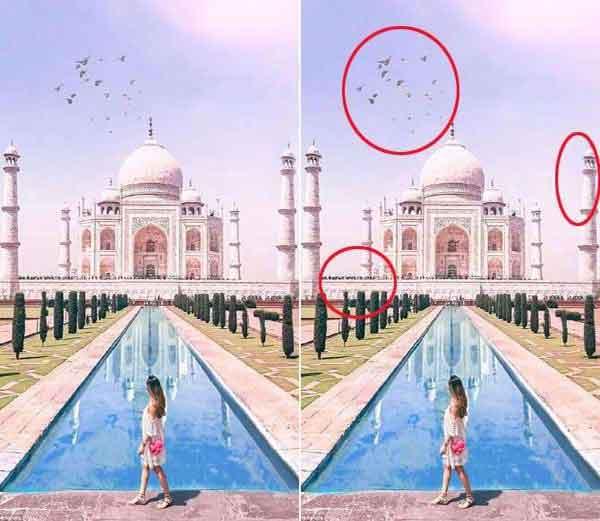 अमेलियाने शेयर केलेला ताजमहलचा फोटो... - Divya Marathi
