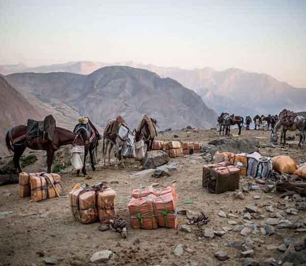 इराण-इराक बॉर्डरवर स्मगलिंगसाठी आणलेले सामान... - Divya Marathi