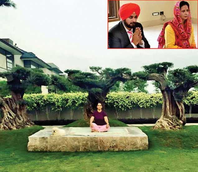 घरातील गार्डन परिसरामध्ये योगा करतना योगा करताना सिद्धू यांची पत्नी. इन्सेटमध्ये घरामध्ये सिद्धू आणि त्यांची पत्नी. - Divya Marathi