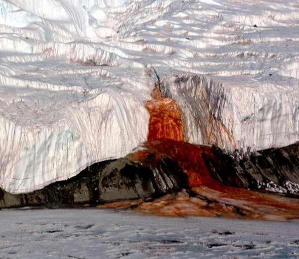 अंटार्कटिका येथील ब्लड फॉल्स..... - Divya Marathi