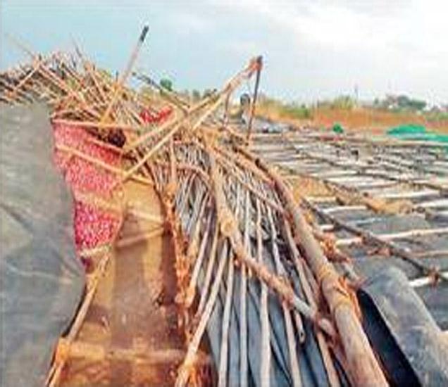 जोरदार वाऱ्यामुळे मनमाडला कांद्यांचे शेड कोसळून असे नुकसान झाले. - Divya Marathi
