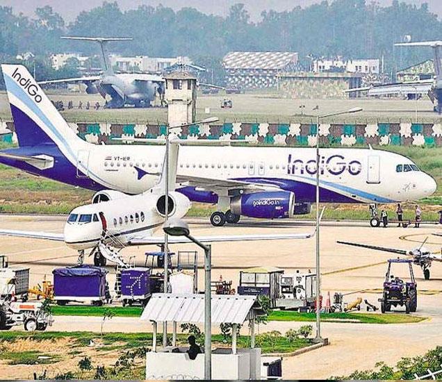 इंडिगो आणि जेट विमानांमध्ये मच्छर असल्याची तक्रार आली आहे. - Divya Marathi