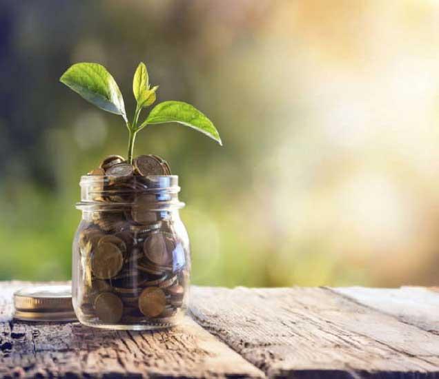 कर बचतीसोबतच या योजनेत तुम्हाला इक्विटीत गुंतवणूकीची संधीही मिळते. - Divya Marathi