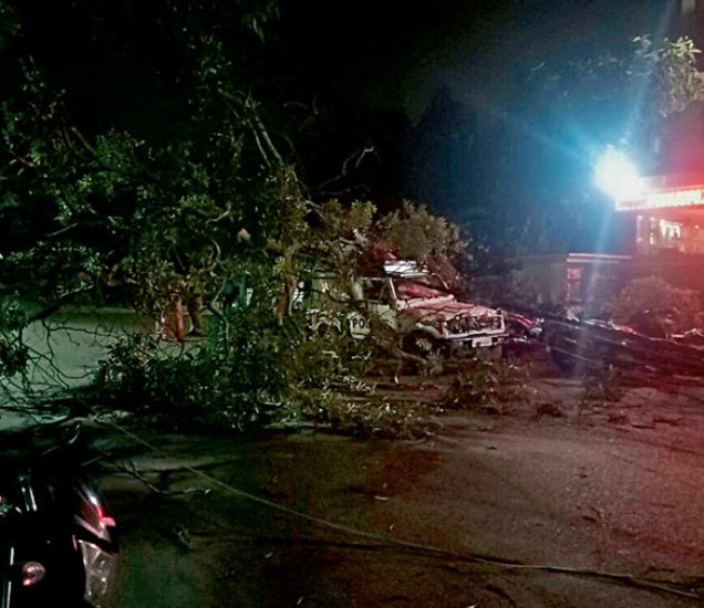 पूर्व दिल्लीमध्ये अनेक ठिकाणी वादळामुळे वीजेचे खांब आणि झाडे कोसळली. - Divya Marathi