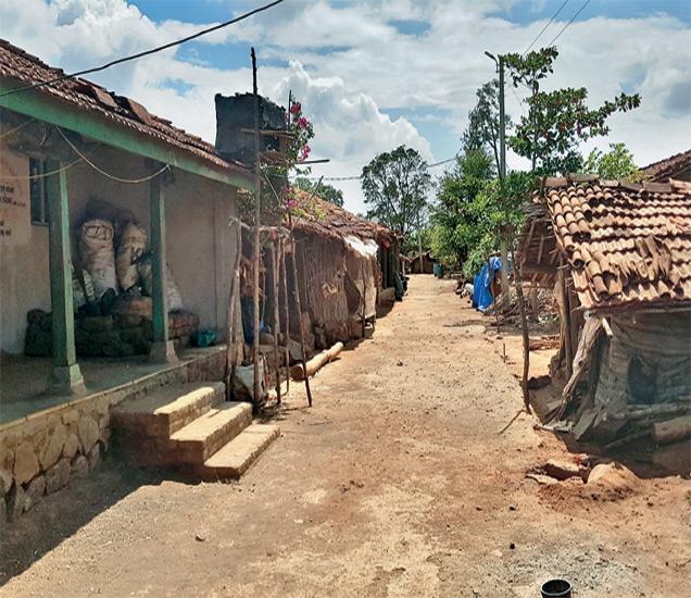 हत्याकांडानंतर राईनपाडा गावातील पुरुष मंडळी पसार झाली. अनेक घरांना कुलूप ठोकले. काही घरांमध्ये वयोवृद्ध आणि महिला दिसून आल्या. - Divya Marathi