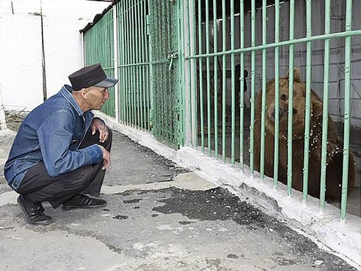 घातक अपराध्यांसोबत तुरुंगात बंद आहे एक मादी अस्वल, मागील 15 वर्षांपासून भोगत आहे आपल्या अपराधांची शिक्षा देश,National - Divya Marathi