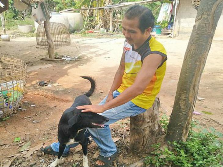 थायलंड : 15 वर्षांच्या आईने शेतात पुरले जिवंत अर्भक, कुत्र्याने माती हटवून वाचवले बाळाचे प्राण|देश,National - Divya Marathi
