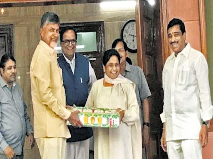 लोकसभा निवडणूक  : सरकारसाठीचा फॉर्म्युला आताच बनवा; नायडूंचा राहुलकडे आग्रह|देश,National - Divya Marathi