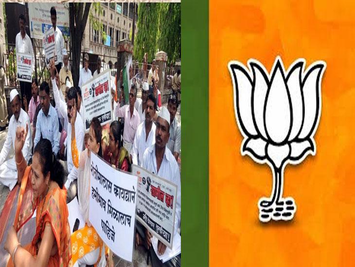 शेतकरी संपाचा वर्धापन दिन : भाजप  सरकारविरोधात  सर्वाधिक मोर्चे, आंदोलने झालेल्या जिल्ह्यातच भाजपच्या बाजूने मतदान|नाशिक,Nashik - Divya Marathi