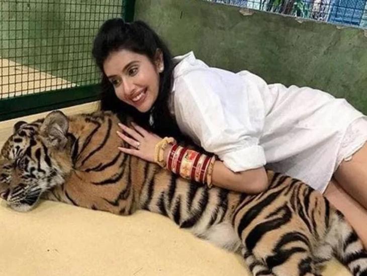 सुश्मिता सेनचा भाऊ राजीवच्या हनीमूनचे फोटोज झाले व्हायरल, वाघासोबत अशा पोज दिल्यामुळे राजीव-चारू होत आहेत ट्रोल| - Divya Marathi