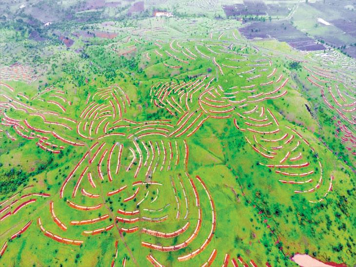 चराचरांत  साचले पाणी : स्वामी रामानंद तीर्थ विद्यापीठ बनणार मार्गदर्शक पर्यटन केंद्र|औरंगाबाद,Aurangabad - Divya Marathi