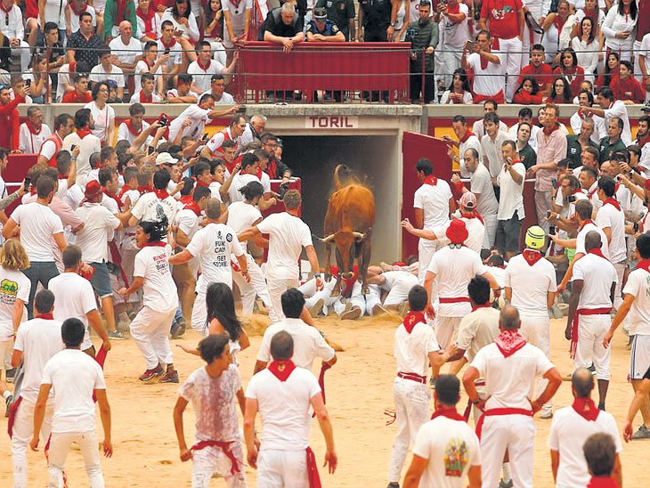 स्पेनमधील सॅन फर्मिन फेस्टिव्हल : सांडांच्या हल्ल्यात पहिल्या दिवशी ५ पर्यटक जखमी, हा आकडा गेल्या ५ वर्षांत सर्वात कमी विदेश,International - Divya Marathi