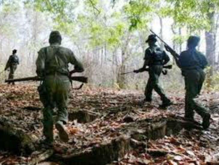 महाराष्ट्र सीमेवर नक्षलवादी आणि जवानांमध्ये चकमक; 7 नक्षलवाद्यांनी कंठस्नान घालण्यात यश  - Divya Marathi