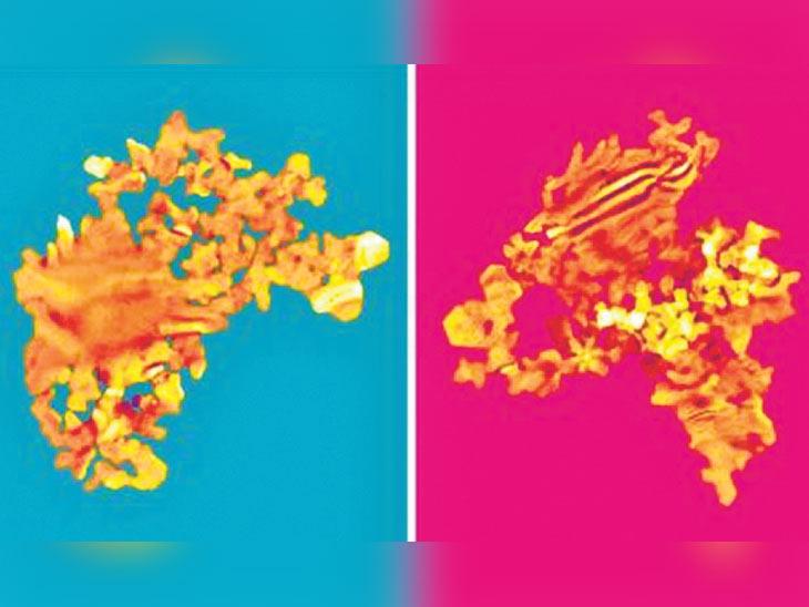 दाेन अणुंच्या मिश्रणातून बनवली साेन्याची सर्वात पातळ प्लेट, मानवी नखाच्या तुलनेत 10 लाख पट पातळ देश,National - Divya Marathi