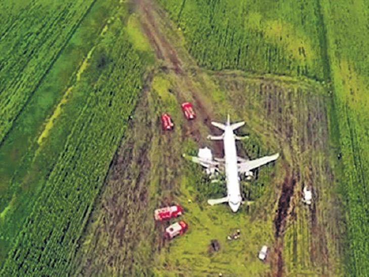 विमानास पक्ष्यांची धडक; इंजिने बंद, विमान मक्याच्या शेतात उतरवले, 233 सुखरूप!  - Divya Marathi
